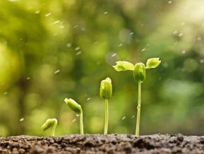 Straujas izaugsmes uzturēšanai ar iekšējām rezervēm būs par maz
